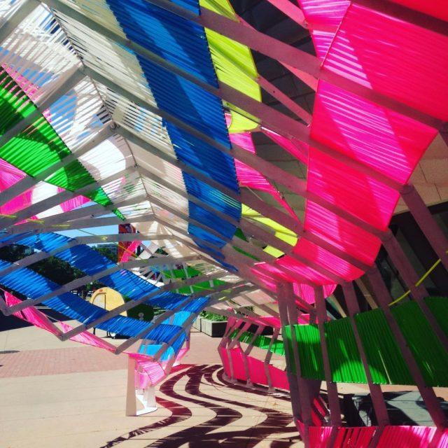 En 2016 diadelosmuseos denverartmuseum denverart denver coloradostate anmate